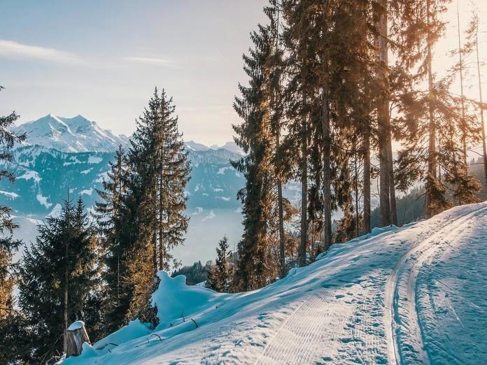 Vitamin-D-Mangel im Winter: Was ist am Phänomen dran?
