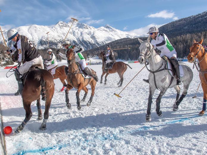 Grünes Licht für Snow Polo auf dem See