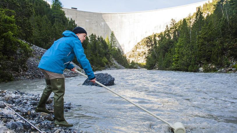 Keine Lösung in Sicht: Der Fluss Spöl bleibt teils giftig