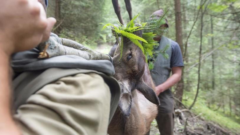 «Die Jäger beherrschen ihr Handwerk und schiessen sehr gut»
