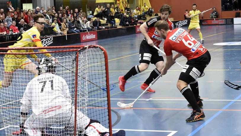 Unihockey Alligator Malans für Online