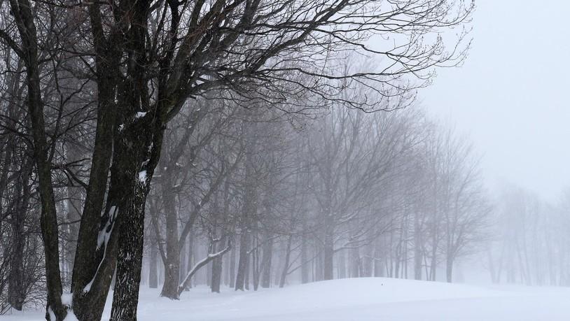 Auf den Sturm folgen Regen und Schnee