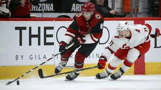 Hurricanes Coyotes Hockey