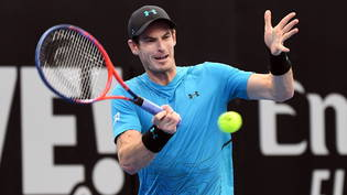 Andy Murray während des Ersrundenspiels in brisbane gegen den Australier James Duckworth